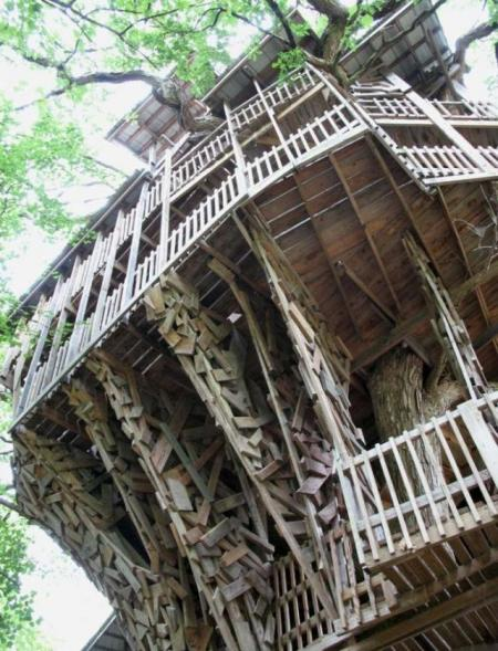 Largest treehouse in the world (25 pics)