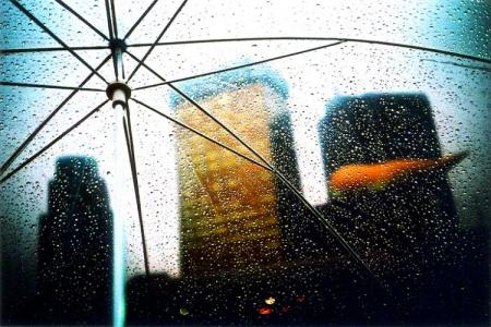 Beautiful raining photos (19 pics)