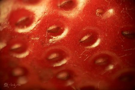 Close-up photography of vegetables, fruits and some objects (18 pics)
