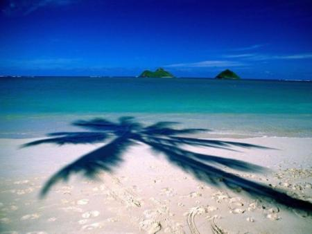 Beautiful beaches (45 pics)