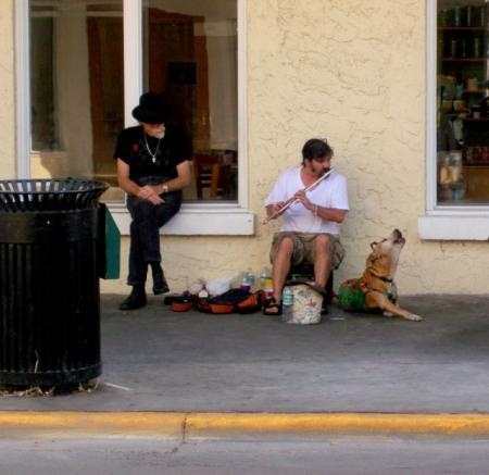 The positive emotion of the day. True friendship (38 pics)