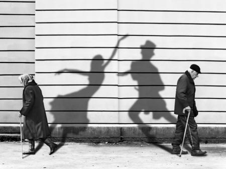 Living shadows (31 pics)